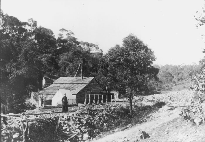 warrandyte gold mine
