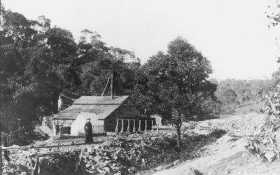 2018 AGM & Talk – Remnant Gold Mines Around Warrandyte